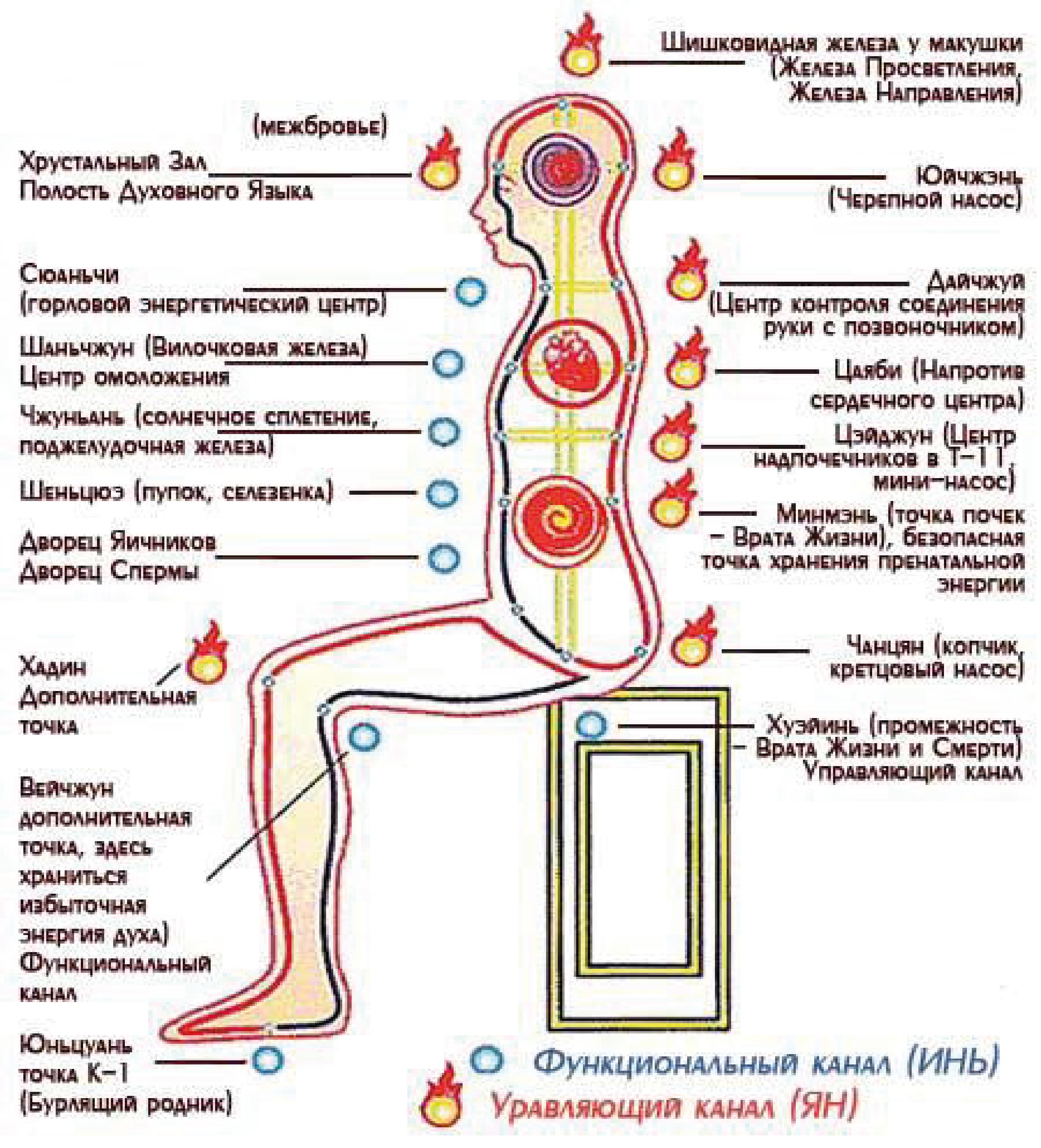 ezhednevniy-onanizm-ukreplyaet-organizm
